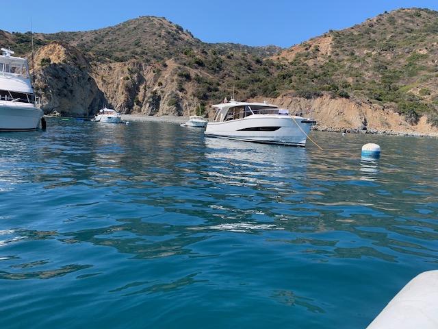 boats anchored in Catalina